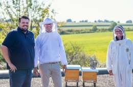 JUNG since 1828: Sustainable bee project started